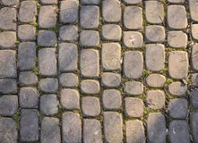 Gray cobbles in the park stock image