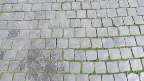 Cobblestone path moss gray tarnished stock photography