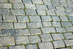 Gray cobblestone street close up Royalty Free Stock Photography