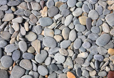Gray and colored stones Royalty Free Stock Photos