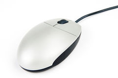 Gray computer mouse on white Stock Photography