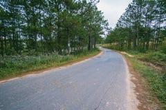 Gray Concrete Road Royalty Free Stock Photos
