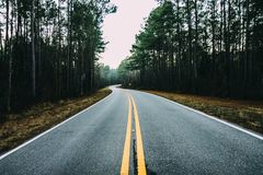 Gray Concrete Road Near Trees Stock Image