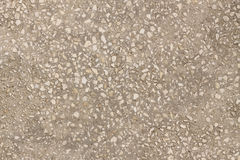 Gray concrete texture closeup Royalty Free Stock Photos