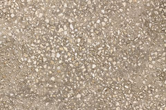 Gray concrete texture closeup Stock Photography