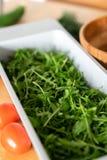 Gray Container da rúcula verde, natural fresca com tomates vermelhos Imagens de Stock Royalty Free