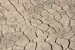 Gray cracked dehydrated land Stock Photography