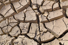 Gray cracked  ground closeup - soil detail Royalty Free Stock Image