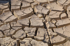 Gray cracked  ground closeup - soil detail Royalty Free Stock Images