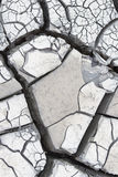 Gray cracked mud Stock Images