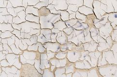 Gray cracked wall texture Royalty Free Stock Photography