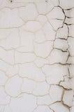 Gray cracked wall texture Stock Photography