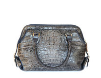 Gray crocodile leatherette handbag for woman on white Stock Photography