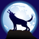 Gray-cruel-wolf. Vector scene of the silhouette of the wolf Royalty Free Stock Photos