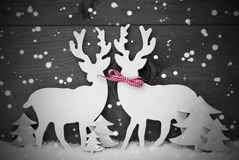 Gray, decorazione di Natale, coppia nell'amore, fiocchi di neve della renna Fotografia Stock Libera da Diritti