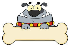 Gray dog cartoon character Stock Image