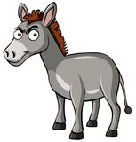 Gray donkey with serious face Royalty Free Stock Photo