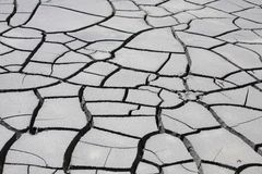 Gray dry cracked mud Royalty Free Stock Photography