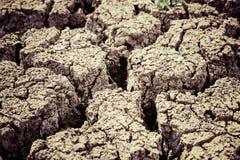 Gray Dry Soil in Macro Shot Photography Stock Photos
