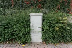 Electrical cabinet surrounded by green bushes on the sidewalk. Gray electrical cabinet surrounded by green bushes on the sidewalk in the summer Stock Photography