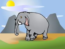 Gray  Elephant Stock Image