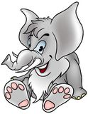 Gray Elephant Stock Photo