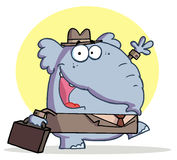 Gray elephant business guy in a hat and suit Royalty Free Stock Photography