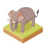 Gray Elephant isométrico Imagen de archivo libre de regalías