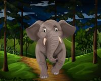 Gray elephant walking in the forest at night. Illustration Royalty Free Stock Photography