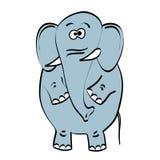 Gray elephant on white background Stock Photos