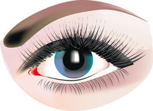 Gray eye makeup Royalty Free Stock Photos
