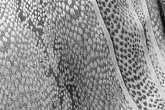 Gray fabric background Stock Image
