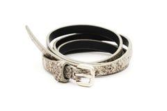 Gray fake leather belt, snake pattern. On white background stock photos