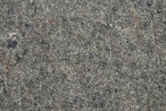 Gray felt background or texture Stock Image