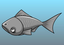Gray fish. On a blue background Royalty Free Stock Photo