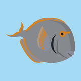 Gray Fish Isolated On Blue Background. Vector Gray Fish Isolated On Blue Background Royalty Free Stock Photos