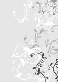 Gray floral Stock Images
