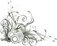 Gray floral background Stock Images