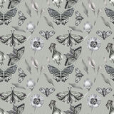 Gray floral pattern Royalty Free Stock Image
