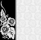 Gray flowers on a black and white background. Gray flowers on an asymmetric black and white background with a broad vertical stripe Royalty Free Stock Image