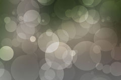 Gray  forest bokeh. Gray natural spring forest bokeh Royalty Free Stock Photography