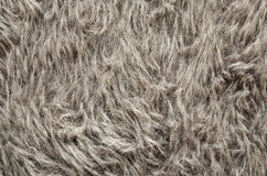 Gray fur texture, close-up Royalty Free Stock Photography