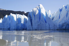 Gray glacier at Torres del Paine National Park Royalty Free Stock Photography