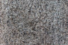 Gray Granite Texture. Close up of a large stone used for the base of Osaka Castle revealing its texture Royalty Free Stock Image