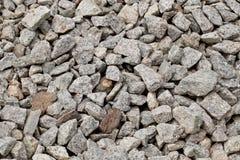 Gray gravel. Royalty Free Stock Photo
