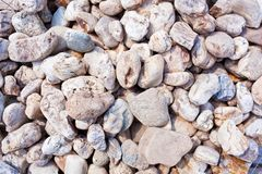 Gray gravel stone floor texture background.  royalty free stock photography
