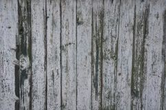 Gray and green paint on a wooden fence royalty free stock image