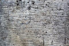 Gray Grunge textur av gammalt skadat taklägga papper med fläckar Arkivbilder