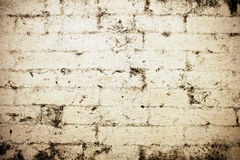 Gray grunge wall texture background Stock Images