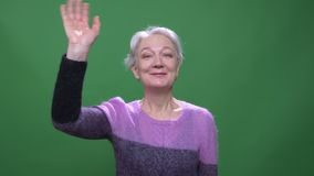 Gray haired grandmother in violet sweater waves hand gladly into camera isolated on green chromakey background. Gray haired grandmother in violet sweater waves stock footage
